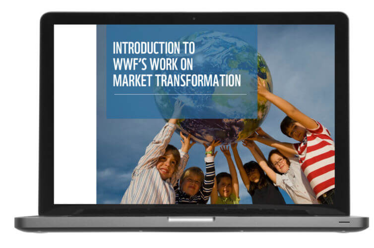 World Wildlife Fund: Market Transformation Course