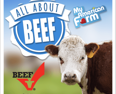 All About Beef