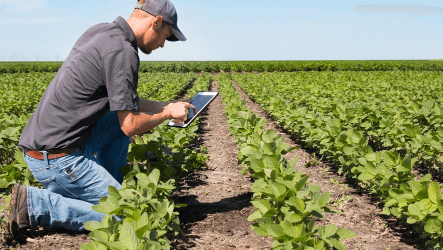Agriculture Observing